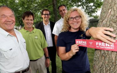 Varennes reçoit un don pour le traitement des frênes affectés par l'agrile