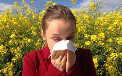 Chronique santé: y a-t-il un lien entre les allergies, l'asthme et l'eczéma?