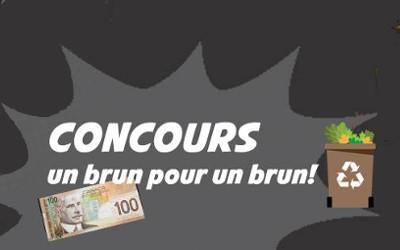 MRC de Pierre-De Saurel: Concours « Un brun pour un brun » maintenant offert aux jeunes de 16 à 35 ans