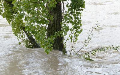 Inondations printanières: un saupoudrage de mesures, sans vision pour le futur