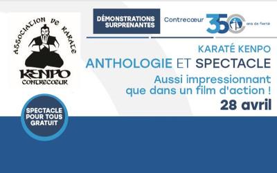 Dans le cadre du 350e anniversaire de Contrecœur: spectacle de karaté gratuit le 28 avril