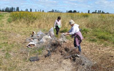 Plantation d'arbres et corvée de nettoyage des rives à l'île du Moine