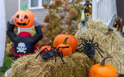 Plus que 11 jours avant la grande Fête Halloween Verchères (FHV2019)!