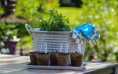 Société d'horticulture Saint-Marc-sur-Richelieu: soyez prêt pour le printemps