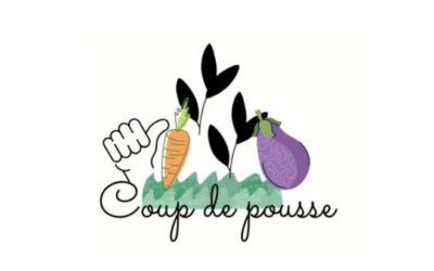 Le Carrefour jeunesse-emploi met sur pied le projet « Coup de pousse »!