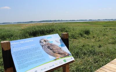 Achalandage important sur les sites protégés de Conservation de la nature Canada: l'organisme rappelle les règles à respecter sur ses propriétés
