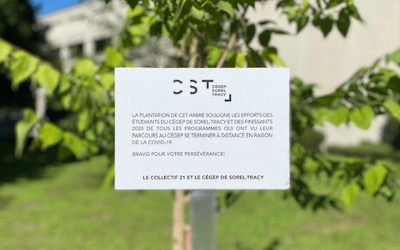 Cégep de Sorel-Tracy: le Collectif 21 plante un arbre en l'honneur des étudiants et des finissants