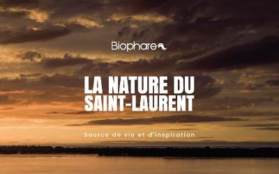 Lancement de la nouvelle publication: La nature du Saint-Laurent, source de vie et d'inspiration