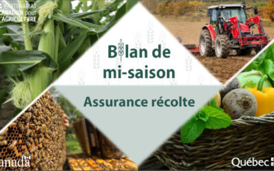 Région de la Montérégie: bilan de mi-saison 2021 en assurance récolte